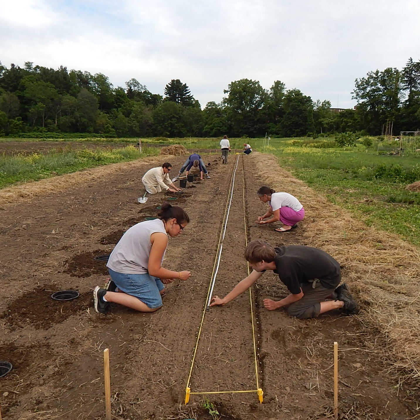 Giving Garden Expands, You Can Help