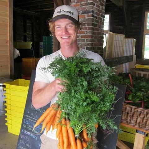 Northampton Community Farm Updates