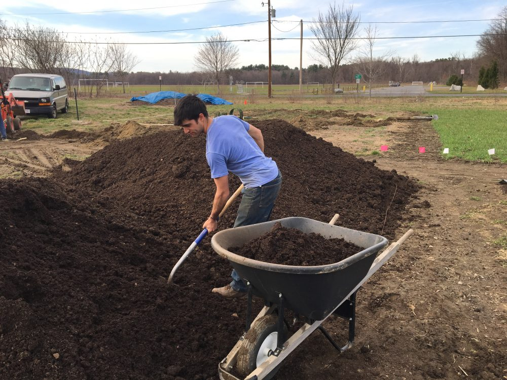 Diego With Pile Of Compost, Shovel, And Wheelbarrow