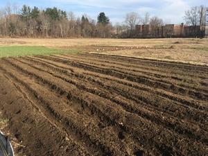 Freshly tilled soil at the Giving Garden