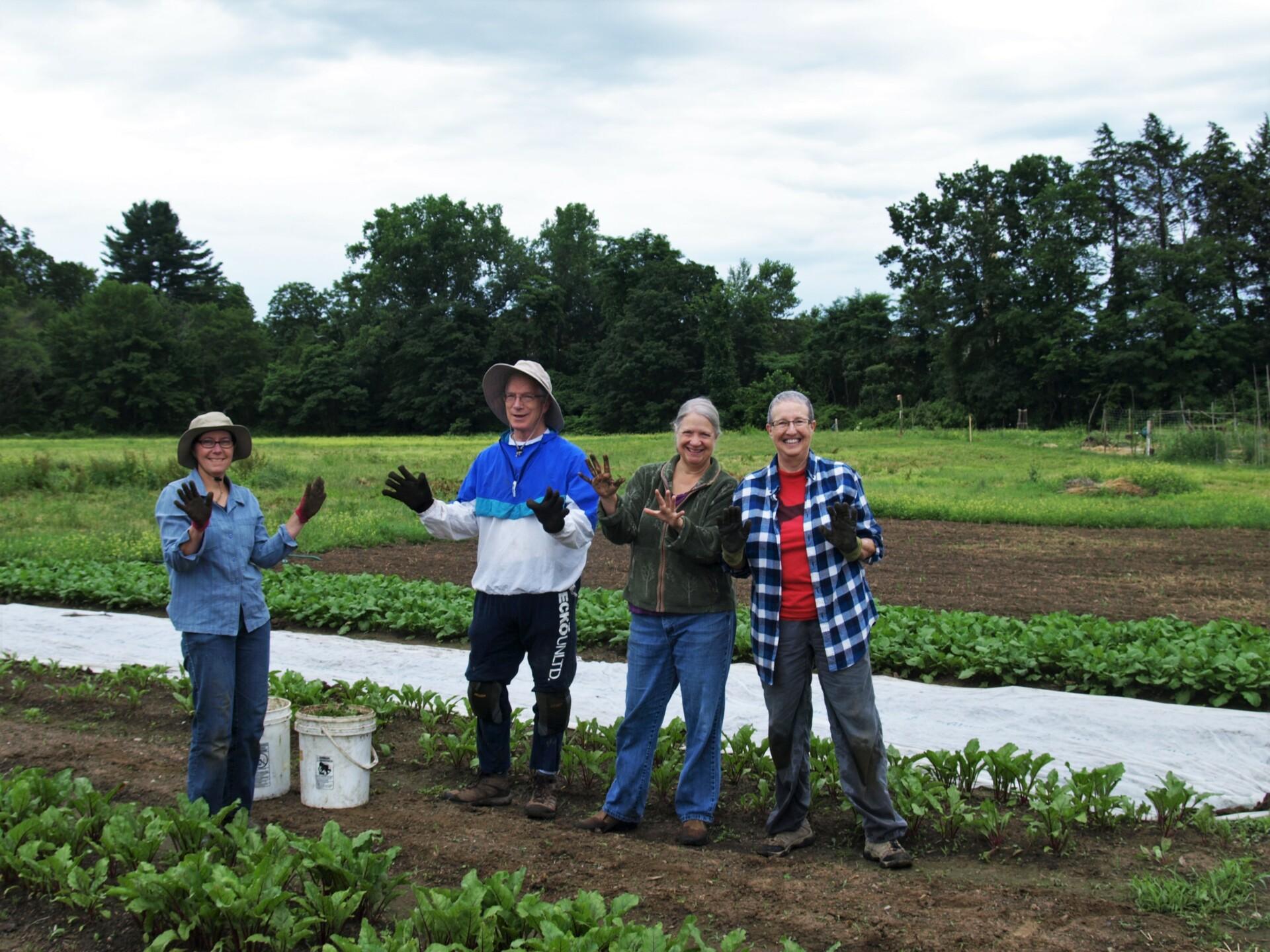 The Bountiful 2017 Giving Garden Season