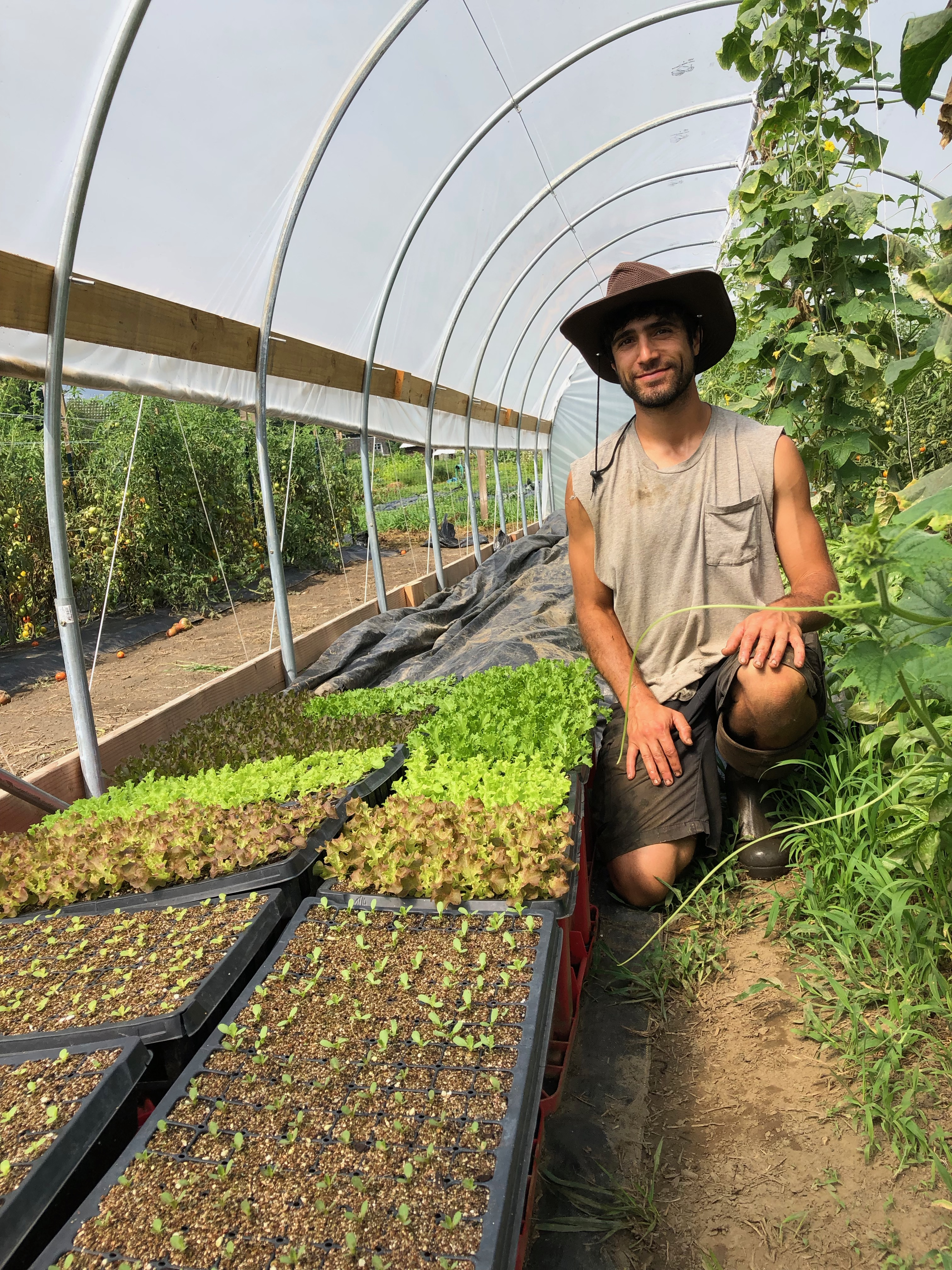 Interview With Song Sparrow Farm!